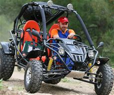 Off-Road Buggy 150cc 9.4HP Full Size (249kg)