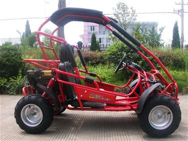Off-Road Buggy 196cc 6.5HP-3