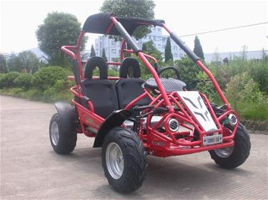 Off-Road Buggy 196cc 6.5HP-4