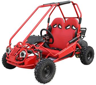 Off-Road Mini Buggy 163cc