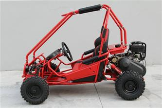 Off-Road Mini Buggy 163cc-2