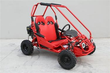 Off-Road Mini Buggy 163cc-3