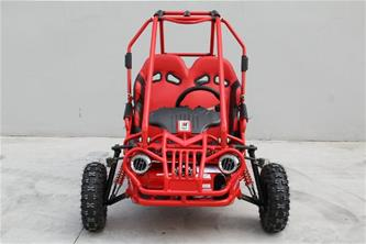 Off-Road Mini Buggy 163cc-4