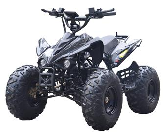 EL ATV Brushless Shaft 800W 48V (Ny 2019 model!)