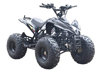 EL ATV Brushless Shaft 800W 48V (Ny 2019 model!)-4