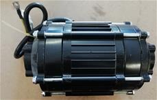 Motor til Renegade Brushless 1200W 48V